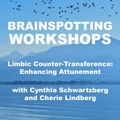 Limbic Counter-Transference: Enhancing Attunement 14th – 16th January 2022